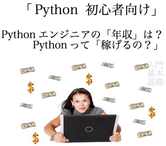 Python 年収 入門 初心者 基本 基礎 2