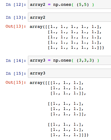 python numpy np ones 2 dimension